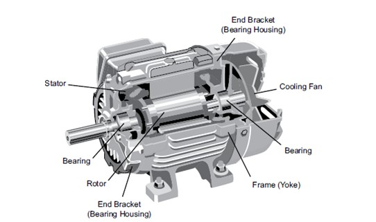 Motor Dissection